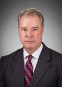 Advisory Committee Chair Governance Committee Member Managing Partner  Wolf Theiss Attorneys at Law